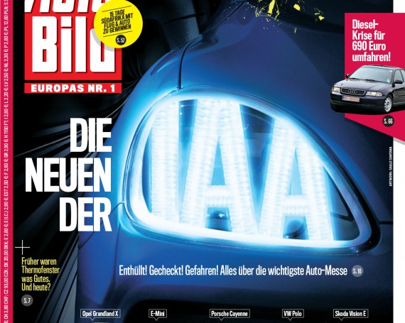 The IAA (cover)